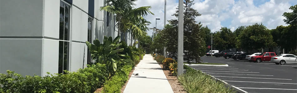 Completed landscaping project for office building in Davie, FL.