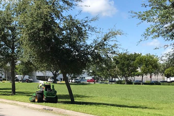 Business property in Davie, FL that has been fertilized.